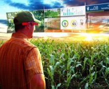 Agricultura inteligente para impulsar a la industria agraria