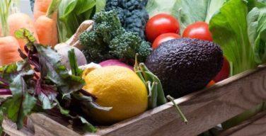 Europa - Agricultura ecológica