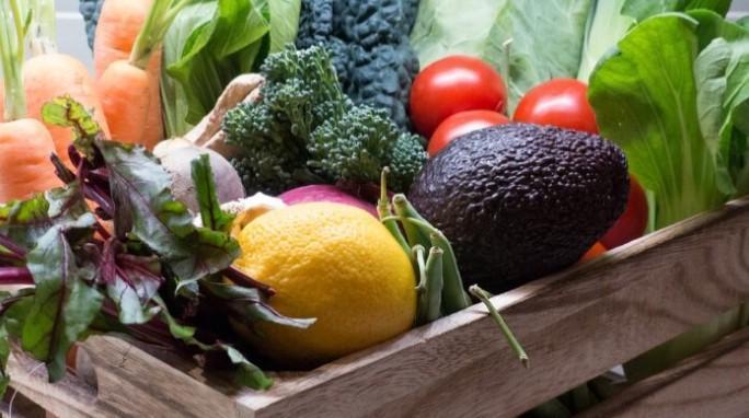 Europa presenta su estrategia para la agricultura ecológica