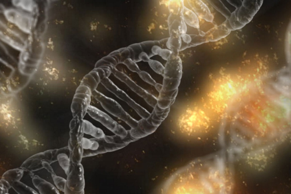 Hallan nuevos genes vinculados al autismo