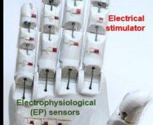 Ingeniería robótica al servicio de la medicina