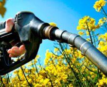 La pandemia y el petróleo barato hacen caer los biocarburantes