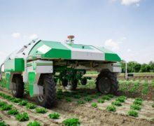 Robots autónomos para una agricultura más sostenible