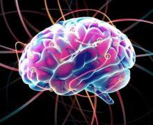 Tu cerebro no está hecho para pensar