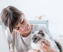 8 consejos para trabajar desde casa sin distraerte